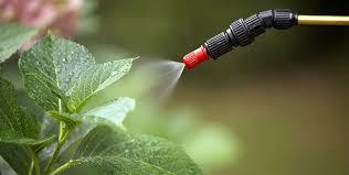 работа с пестицидами